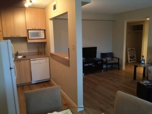 Kitchen Living Area Pic